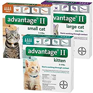 Pet med store coupons