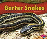 img - for Garter Snakes book / textbook / text book