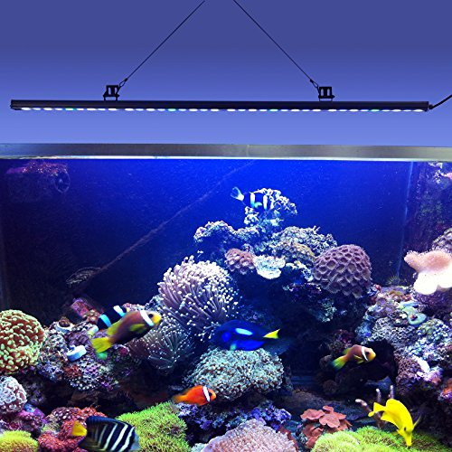 Lightimetunnel108w waterproof led aquarium light strip reef coral lightimetunnel108w waterproof led aquarium light strip reef coral lighting bar for 48 inch fish tank ip65 45 inch animals pet supplies pet supplies fish aloadofball Image collections