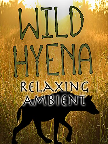 Wild Hyena Relaxing Ambient