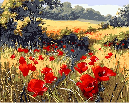 YEESAM ART Paint by Number Kits for Adults Kids - Red Poppy Flower Garden 16x20 inch Linen Canvas (Without Frame)
