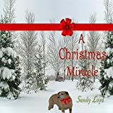 img - for A Christmas Miracle book / textbook / text book
