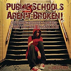 The Public Schools Aren't Broken Audiobook