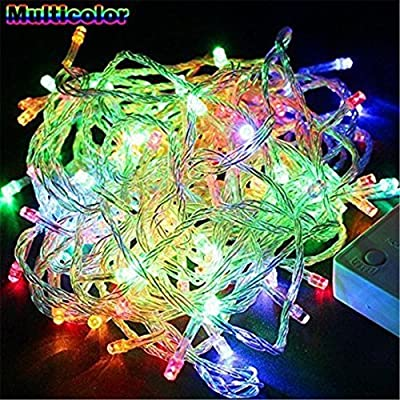 Greenyourlife 10M 33ft 100 Leds Flexible LED Fairy String Lights Waterproof with Control Box for Indoor Outdoor Gardens, Homes, Christmas Wedding Party Decoration - Multi-color+Stylus Dust Plug