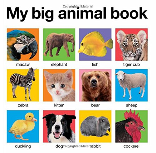 My Big Animal Book (My Big Board Books) (Picture Books About Babies compare prices)