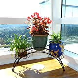 Elegant Arch Design Black Metal Plant Stand / Flower Pots Shelf Unit / Decorative Planter Stand - MyGift®