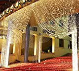 Ecandy 3M x 3M 300 LED Outdoor Party christmas xmas String Fairy Wedding Curtain Light 8 Modes for Choice 110V,Warm White Lights