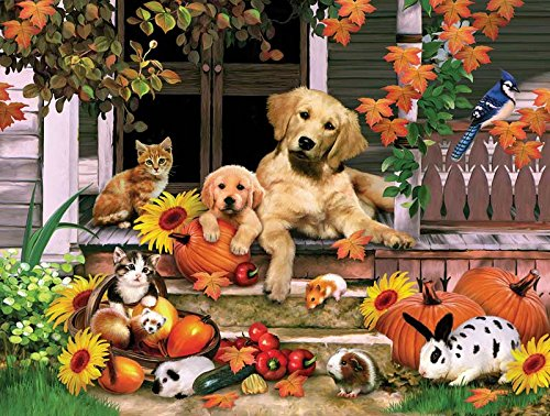 Autumn on the Porch a 300-Piece Jigsaw Puzzle by Sunsout Inc.
