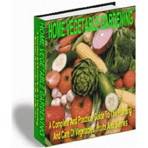 Home Vegetable Gardening (Pink Panda Publishing) (Kindle Edition)