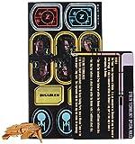 WizKids - Juego de miniaturas Star Trek, para 2 jugadores (WZK71282) (importado)