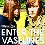 Enter The Vaselines [オリジナル・ライナーノーツ14000字訳付き / 2CD / 国内盤] (TRCP90/91)