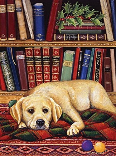 Read to Me 1000 Piece Jigsaw Puzzle by Sunsout Inc.