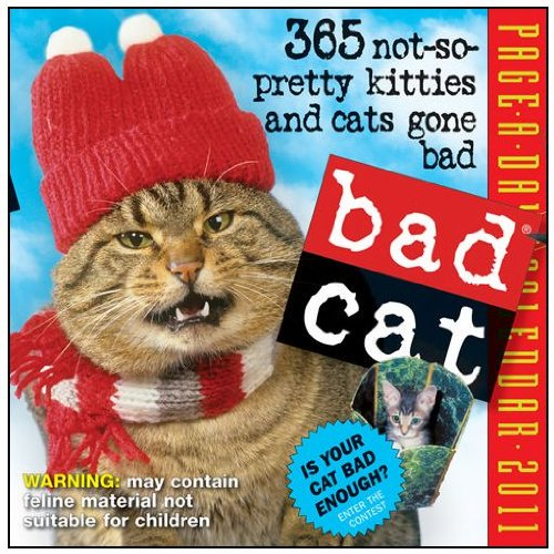 Bad Cat Page-a-day 2011 Desk Calendar