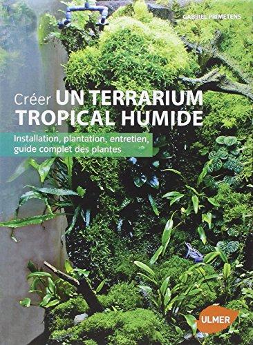 creer-un-terrarium-tropical-humide-installation-plantation-entretien-guide-complet-des-plantes
