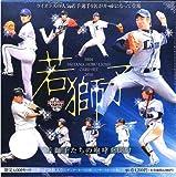 BBM 埼玉西武ライオンズカードセット 2010 若獅子 BOX