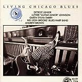 Living Chicago Blues 4