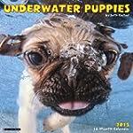 Underwater Puppies 2015 Mini Calendar