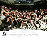 Boston Bruins - Celebrate winning the 2011 NHL Stanley Cup - 8x10 Photo