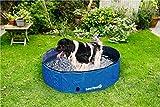 Bild: Doggy Pool für Hunde Planschbecken Schwimmbecken Schwimmbad Wasserbecken 120x30cm 340 Liter