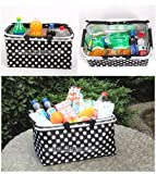 Cooler Bag-31L Large Insulated Thermal Picnic Camping Lunch Tote Storage Ice Box