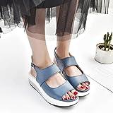 Women Platform Shoes,Hemlock Wedges Sandals Fish Mouth Thick Bottom High Heel Shoes Boots (US:9, Blue) (Color: Blue, Tamaño: US:9)
