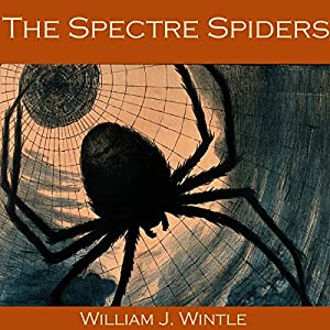 The Spectre Spiders Audiobook