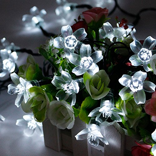 Zitrades 3 Modes 21Ft 50 Led White Blossom Solar Fairy Lights For Gardens, Homes, Christmas, Partys, Weddings