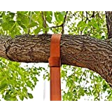 EASY-HANG SWING STRAP - 1000 lbs. Single 5 ft. Strap Plus Carabiner - The Safest, Easiest Way to Hang Any Swing for Your Kids or GrandKids - Safe, Fast & Easy Installation - by Planet Earth Play Equipment - Satisfaction Guaranteed