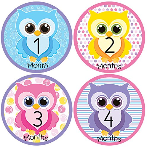 Owl Baby Month Stickers For Bodysuit #32