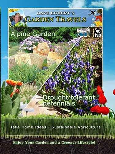 Garden Travels - Alpine Garden - Drought tolerant perennials