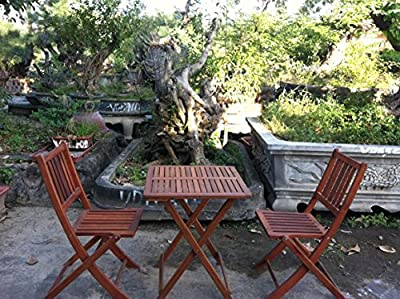 Ouse Valley Table and Chairs Set. Dark Hardwood. Garden Square Furniture. Folding. 3 Pieces.