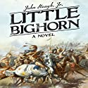 Little Bighorn: A Novel Audiobook by John Hough Jr. Narrated by Rex Anderson