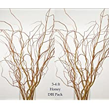 Curly Willow from 3Ft up to 7Ft Tall, DBL Bunch of 14-20 stems