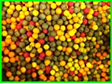 10mm Boilies Mega Mix - Tutti / Pineapple / Scopex / Anchovy etc pack of 100 carp baits