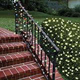 Solar Multicolor LED Christmas Lights