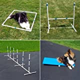 Agility Gear Starter Package with Tippy Board
