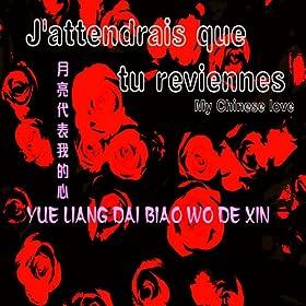 Yue Liang Dai Biao Wo De Xin ???????