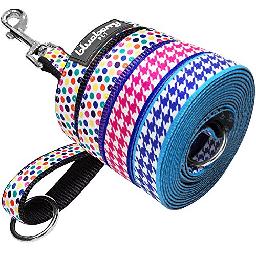 Blueberry Pet Durable Classy Houndstooth Statement Dog Leash 5 ft x 3/4