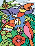 8-3/4 Inch x11-3/4 Inch My First Paint By Number Kit - Birds