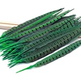 BLEVET 50PCS Nature Pheasant Feathers 30-35cm Pheasant Tail Feathers for Decoration BK003 (30-35cm, 50pcs Green) (Color: 50pcs Green, Tamaño: 30-35cm)