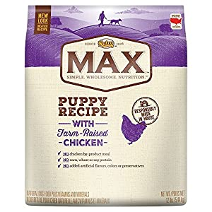 NUTRO MAX Puppy Recipe With Farm Raised Chicken Dry Dog Food 12 Pounds