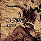 ��ADAM��(TYPE-A)(����ȯ�䡡ͽ���)