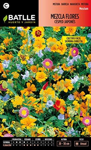 semillas-batlle-097421bols-mezcla-de-flores-cesped-japones