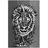 The Racoon Black African Lion Poster Laminated Matte Finish, Medium (24 X 16 In)