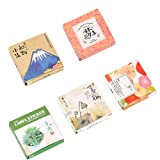 Kawaii Paper Stationery Sticker Set (5 Set, 200 Pieces) Japanese Style Succulent Plants Floral Scenery Cute Scrapbooking Decorative Diary Planner Journal Handmade DIY Label Gift Packing Decor