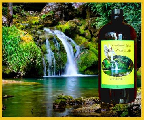 32oz COLLOIDAL SILVER: Garden of Eden, Water of Life