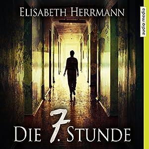 Die 7. Stunde (Joachim Vernau 2) Hörbuch
