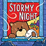 Stormy Night