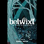 Betwixt: The Mystery of Talon Mountain | Brenda C. Watson