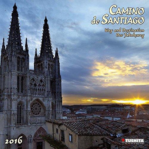 Camino de Santiago (160132) (English, Spanish, French, Italian and German Edition) PDF